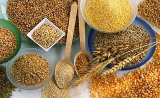 10 dicas diárias para uma alimentação saudável